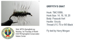 Griffith's Gnat