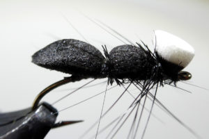 foam-ant-with-hackle-legs-1