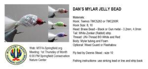 dans-mylar-jelly-bean
