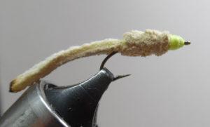 chamois-worm-1