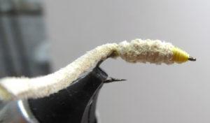 chamois-worm