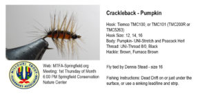 crackleback-pumpkin