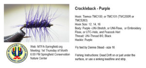 crackleback-purple