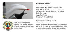 red-head-rabbit
